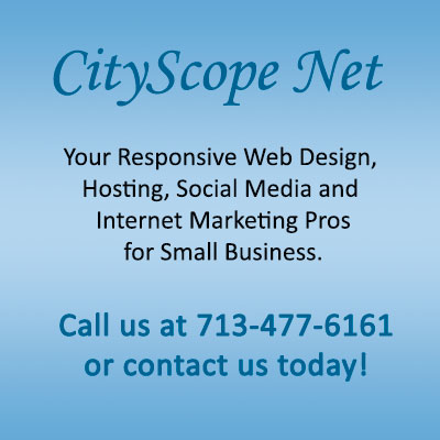 CityScope Net - Web Design, Hosting, Internet Marketin Professionals for Small Business